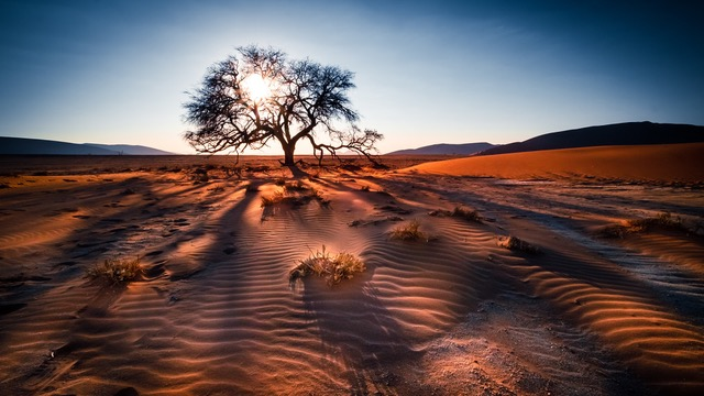 Wilderness safaris launches 'Africa in Focus' photo competition