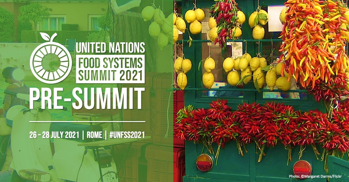 NEW COALITIONS ANNOUNCED AT THE UN FOOD SYSTEMS SUMMIT